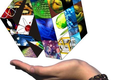La Universidad de Zaragoza presenta el Libro Blanco de la Ciencia Ciudadana en Bruselas