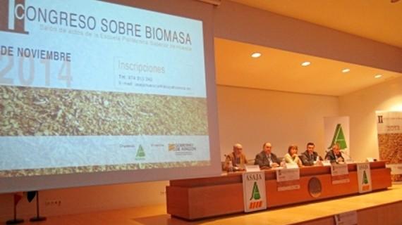 El sector de la Biomasa supone un importante impulso para el empleo en Aragón