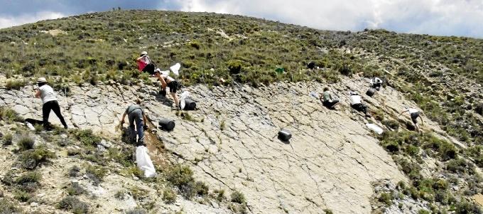 El IAJ destina 120.000 euros para la realización de Campos de Trabajo