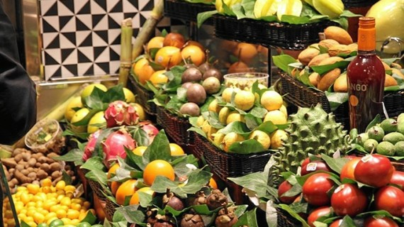 Zaragoza debate sobre la alimentación y su efecto sobre nuestra salud