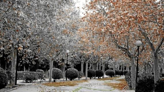 El suelo del Parque Labordeta estará decorado con diseños y colores atractivos