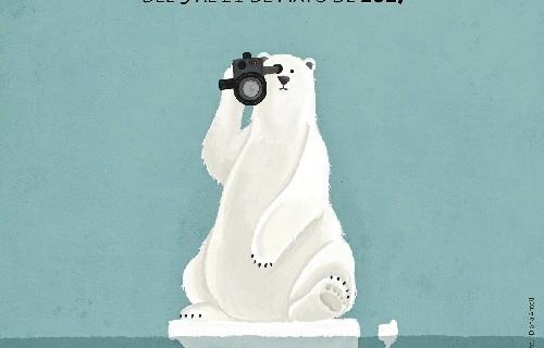 Un oso grabando con una cámara es la imagen de la décima edición de 'Ecocine'