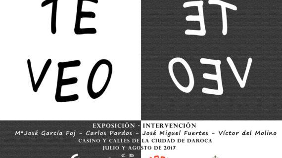 'Te veo', una exposición -intervención de la Asociación de Arte y Cultura de Daroca y Comarca