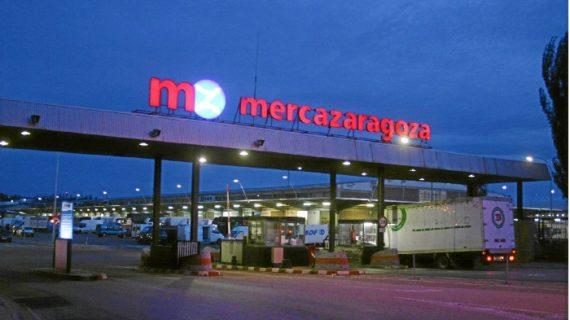 Mercazaragoza invierte 6 millones de euros en un nuevo matadero de porcino