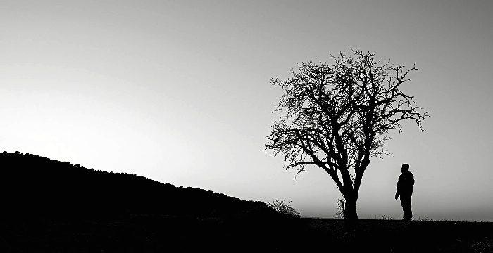 'Naturaleza en Blanco y Negro', una visión apasionada