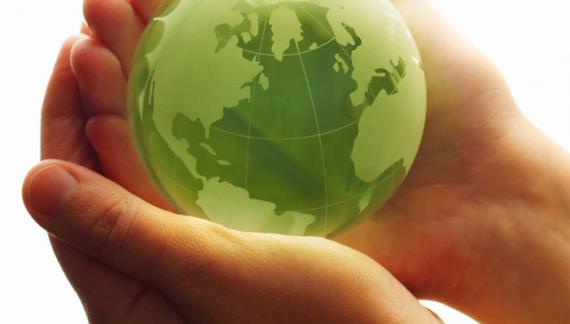 Guía verde: Una plataforma virtual clave para el sector verde