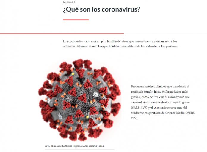 Cruz Roja lanza un curso en abierto para prevenir la propagación del coronavirus