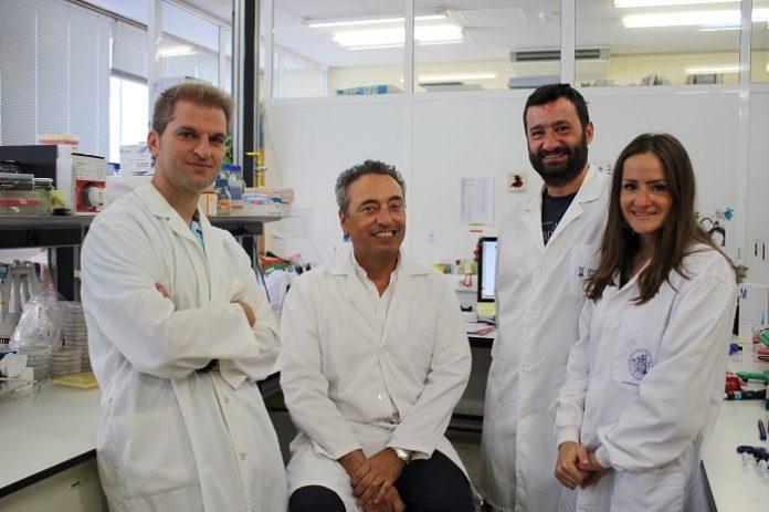 Unizar estudia si su vacuna contra la tuberculosis es útil frente al COVID-19