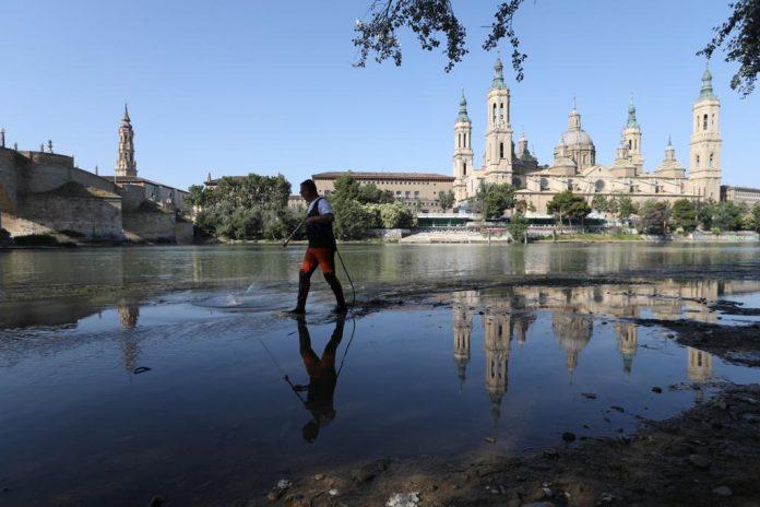 Zaragoza combate la mosca negra en los ríos Gállego y Ebro