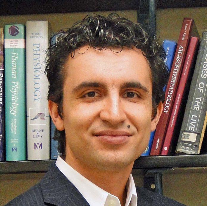 Investigador del IIS Aragón participa en la expansión de células madre de hígado a gran escala