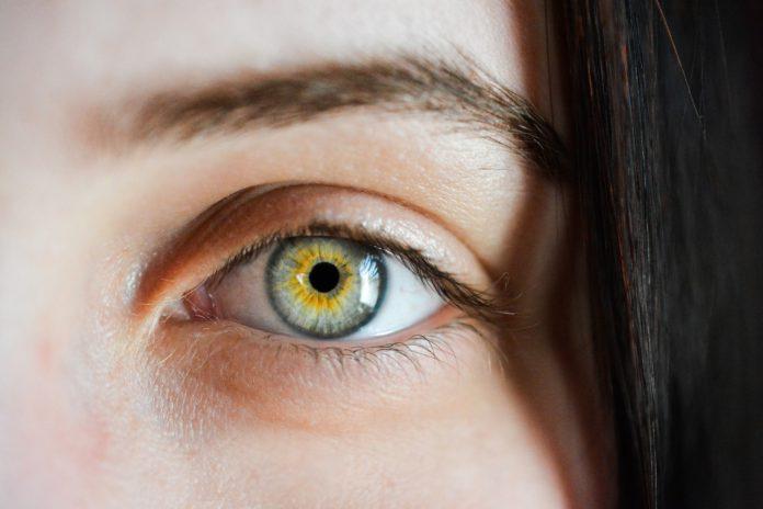 Todo sobre la retinosis pigmentaria, la enfermedad hereditaria de retina más frecuente