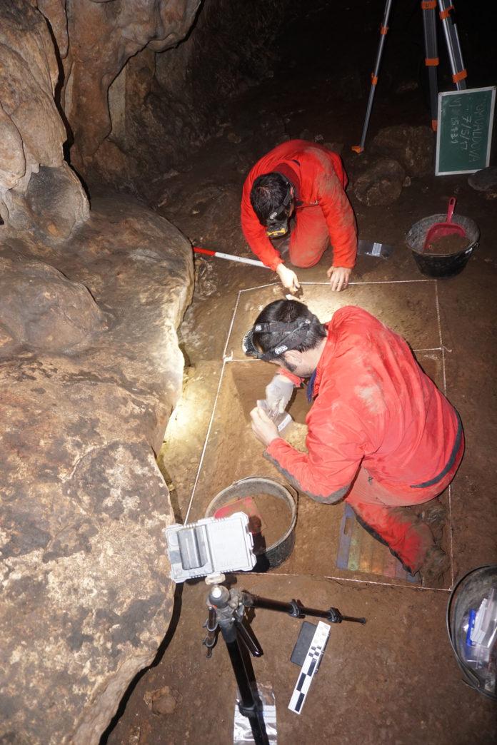 Investigador de Unizar abre camino en el estudio del arte paleolítico