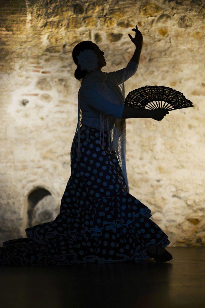 El Centro Cívico Delicias se convierte, este viernes, en un tablao flamenco