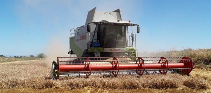 Abonan a los agricultores aragoneses el segundo pago de la PAC