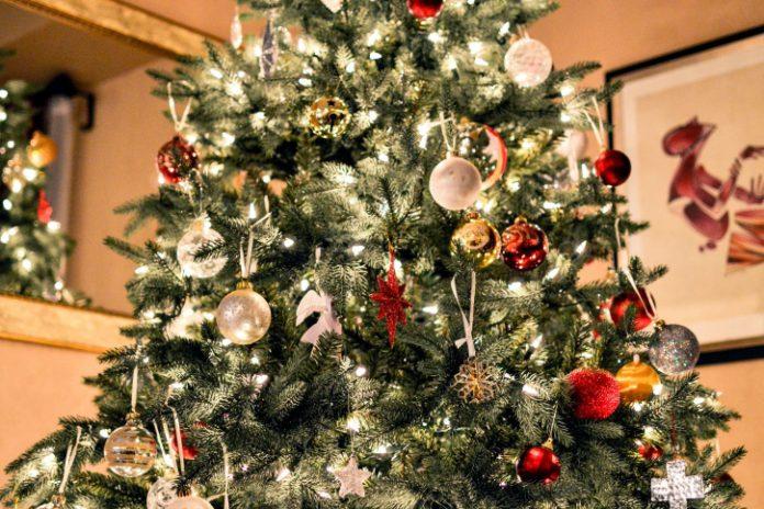 ¡No tires tu árbol de Navidad! Recíclalo en estos puntos de Zaragoza y Huesca