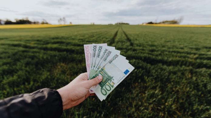 Los préstamos personales como alternativa para sobrellevar la crisis